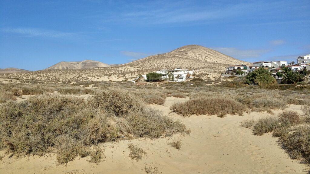 Natuur Costa Calma